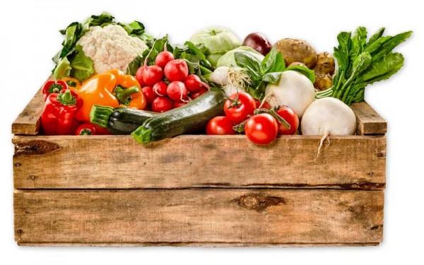 Gemüse der Saison in der 6 kg Kiste