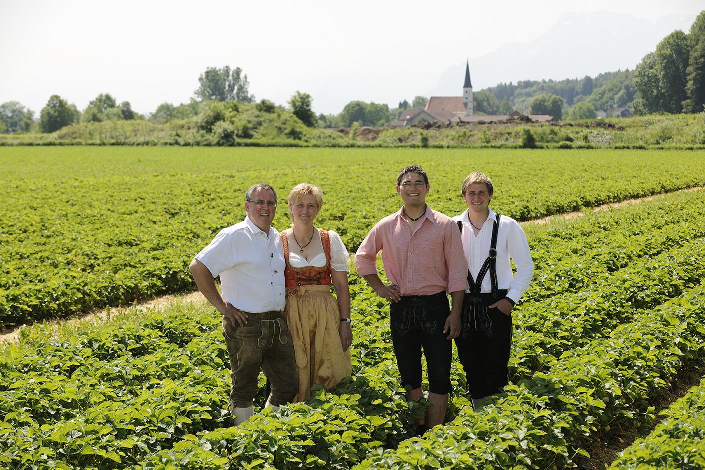 Hausner-Familie-Erdbeeren
